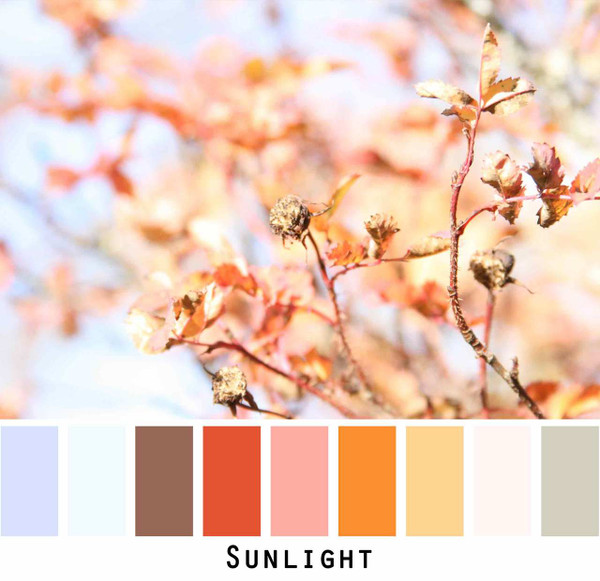 Sunlight pastel sky blue peach coral brown red gold ivory grey photograph by Inese Iris Liepina