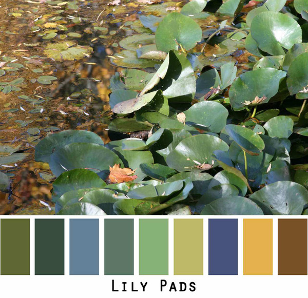 Lily Pads green teal olive lime gold navy brown photograph by Inese Iris Liepina