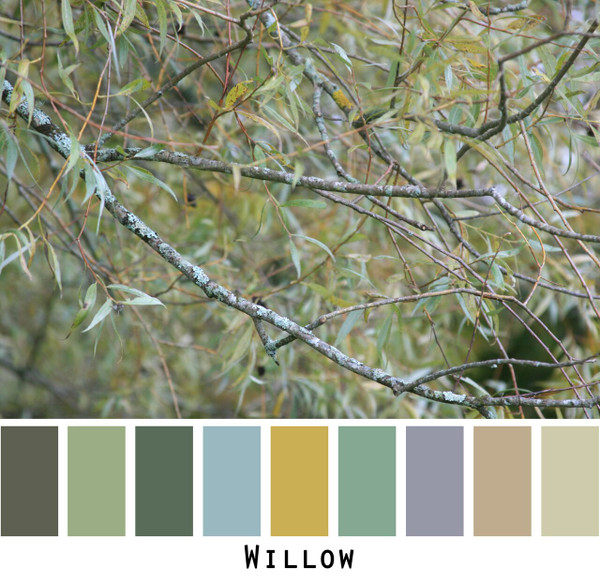 Willow photo color card for custom orders photographed by Inese Iris Liepina   Wrapture by Inese
