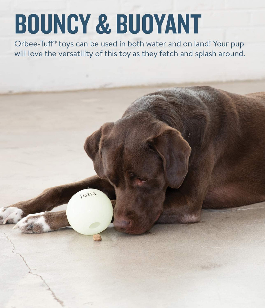 "Planet Dog Orbee Tuff Luna Ball 4"""