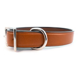 Auburn Town Leather Collar