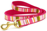 Up Country Donna Stripe Dog Collar