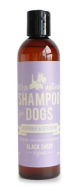 Black Sheep Lavender & Geranium Organic Shampoo 8oz.