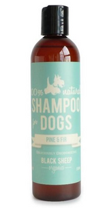 Black Sheep Pine & Fir Organic Shampoo 8oz.
