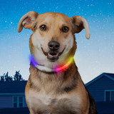 Nite Ize NiteHowl® Mini Rechargeable LED Safety Necklace - Disc-O Select™