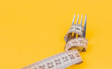 How To Easily Use A Portion Control Plate For Weight Loss