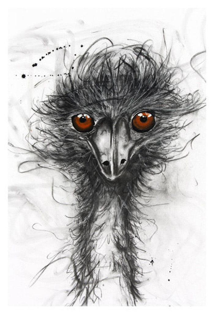 Emu Print on canvas by Sobrane. This product is stretched on wood and ready to hang. Comes in various sizes. This product is produced in Broome.