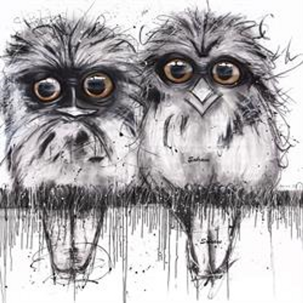 Funky all cotton tote featuring my scruffy Tawny Frogmouths 45cm x 45cm. Scotch guard protection. Washable