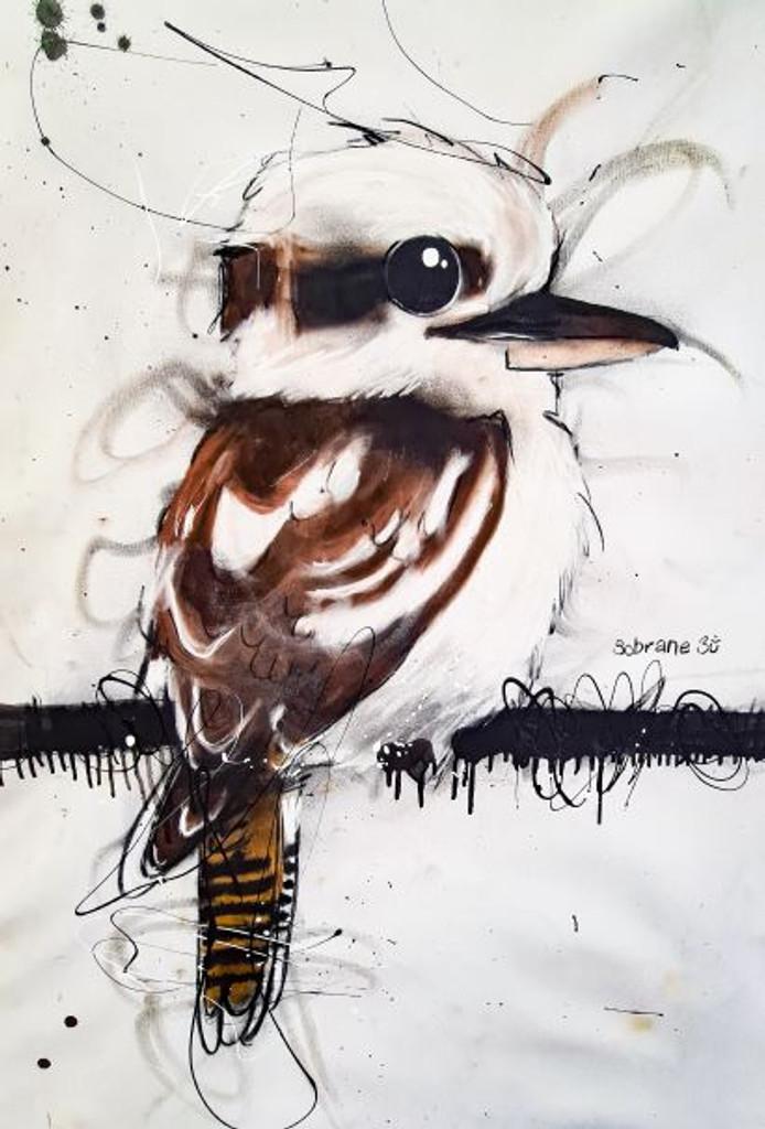 Lil Kookaburra