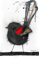Red Winged Fairy Wren Original completed in Pastels, spray-paint, charcoal and enamel.  Artwork is on canvas