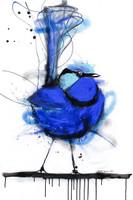Splendid Blue Wren Print