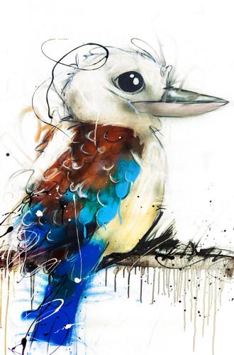 Blue winged Kooka