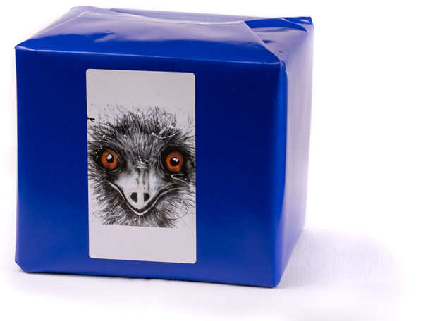 Emu Mug