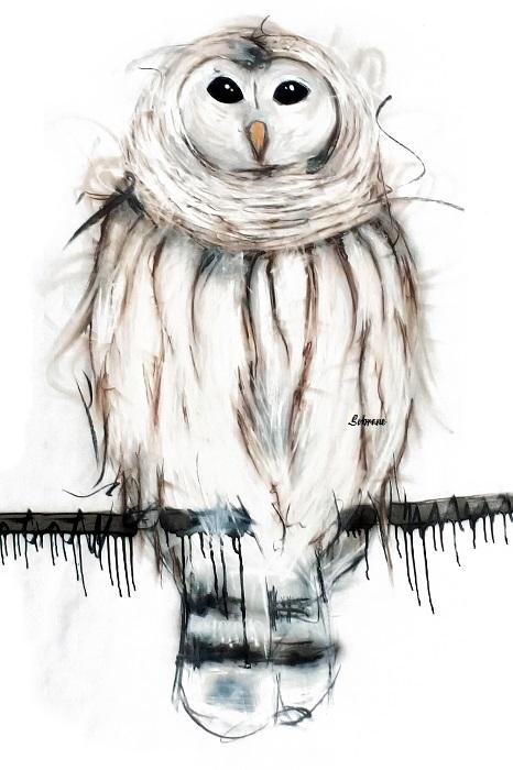 Snowy Owl Original by Sobrane