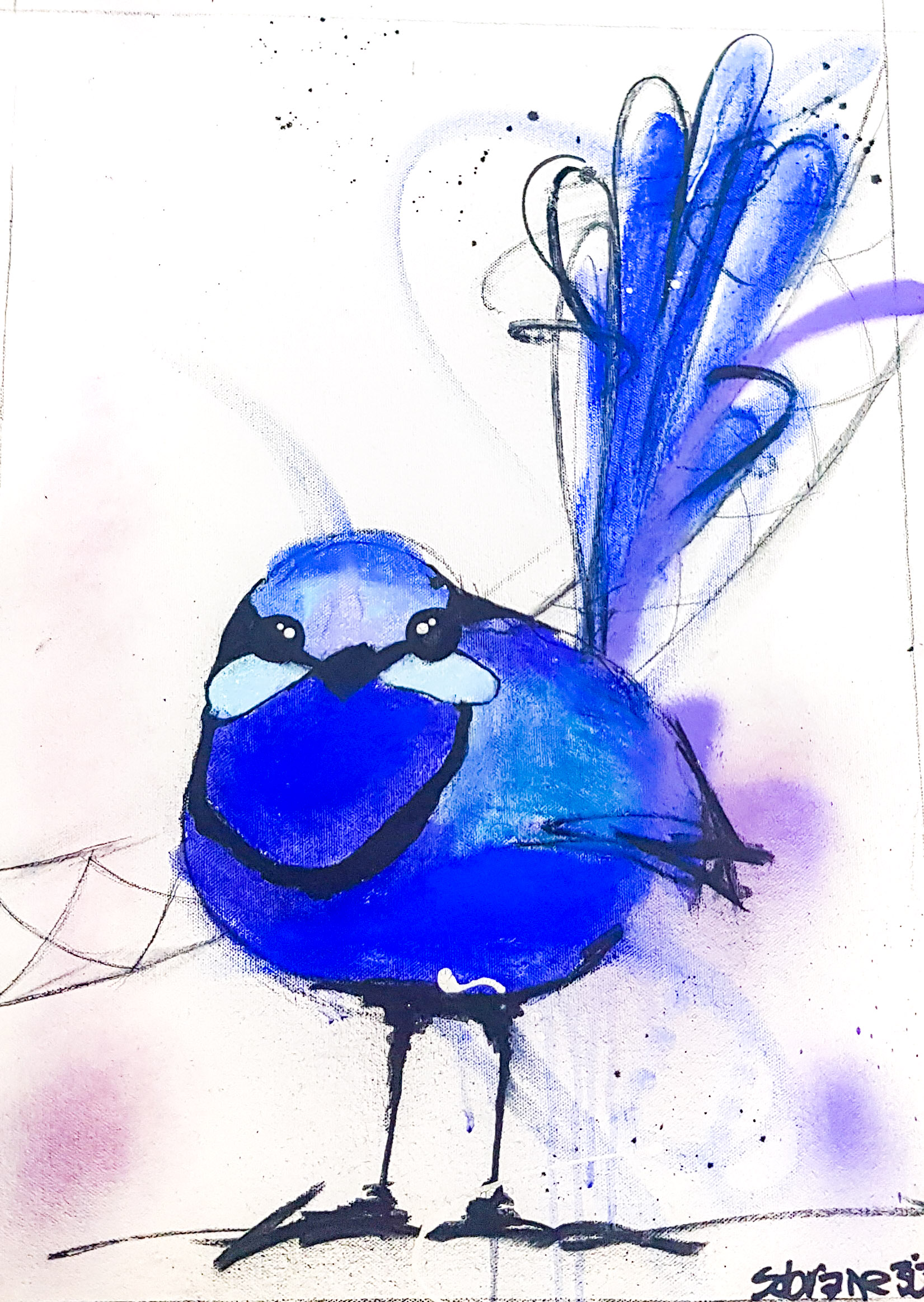 Splendid Blue Wren Original Original artwork completed in Pastels, spray-paint, charcoal and enamel.  Artwork is on canvas 53 x 38 cm FREE SHIPPING ON ALL ORIGINALS WORLDWIDE