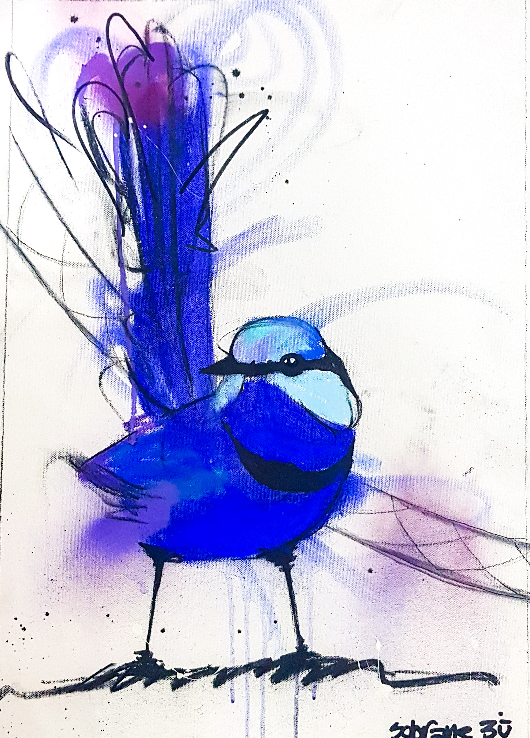 Splendid Blue Wren II Original Original artwork completed in Pastels, spray-paint, charcoal and enamel.  Artwork is on canvas 53 x 38 cm FREE SHIPPING ON ALL ORIGINALS WORLDWIDE