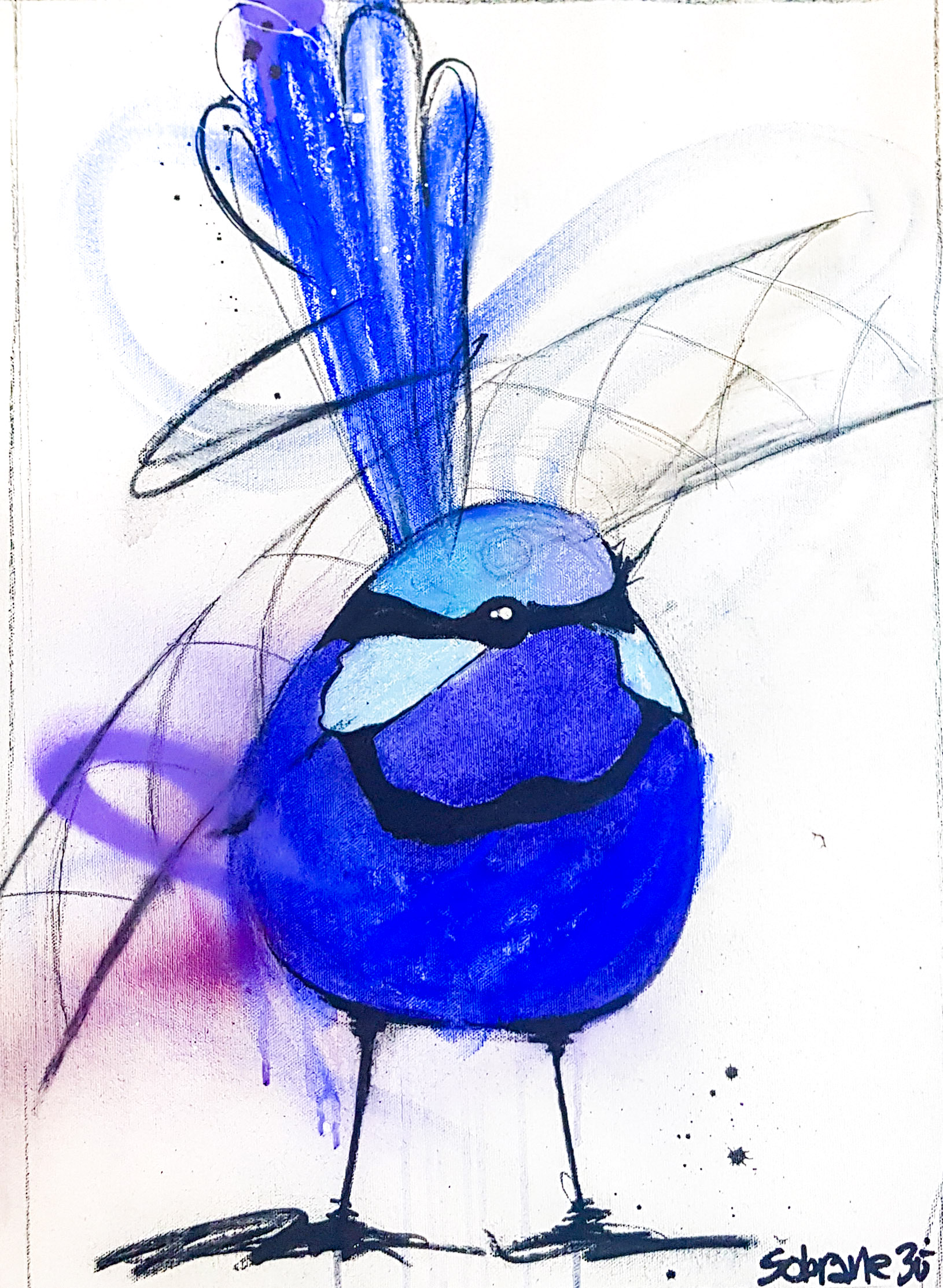 Splendid Blue Wren IV Original Original artwork completed in Pastels, spray-paint, charcoal and enamel.  Artwork is on canvas 53 x 38 cm FREE SHIPPING ON ALL ORIGINALS WORLDWIDE