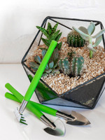 Houseplant and Terrarium Tool Set by Burgon & Ball in use
