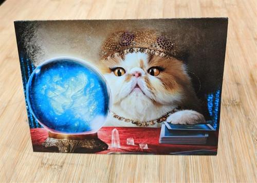 Avanti Card Cat Birthday Fortune Teller