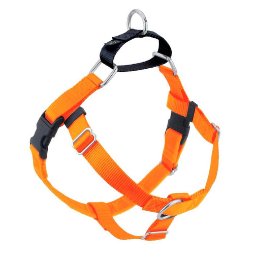 2 Hounds Harness 1in Med Orange