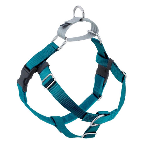 2 Hounds Harness 1in Med Teal