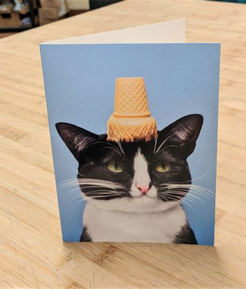 Avanti Card Cat Birthday Cat w IC Cone