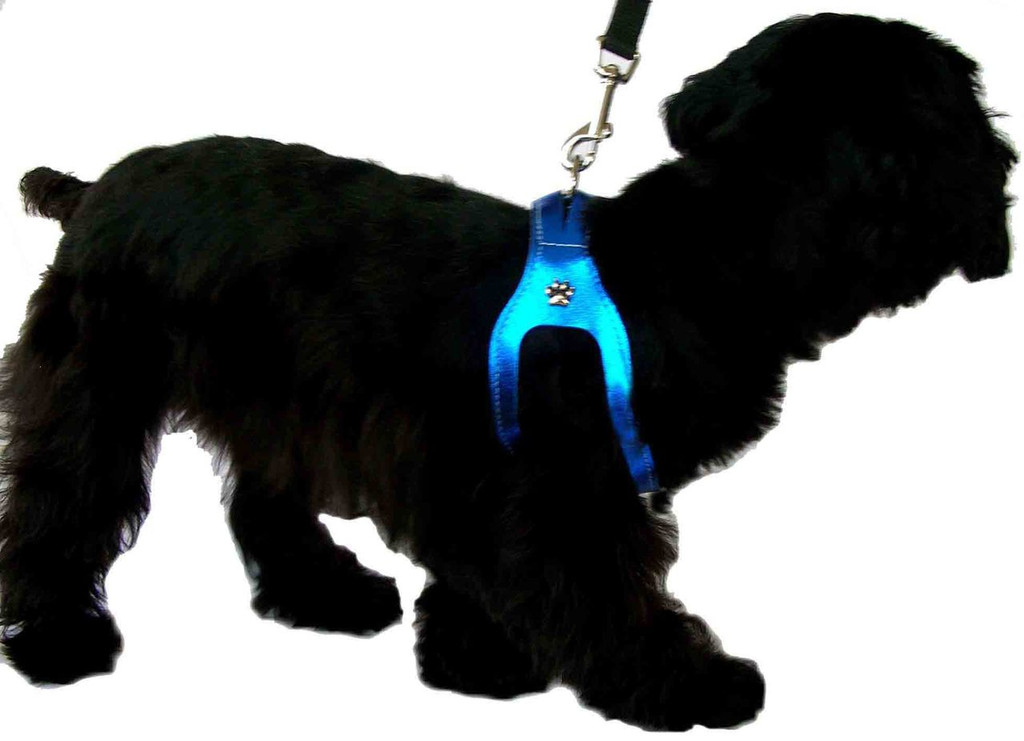 ChokeFree™ METALLIC Leather Shoulder Collar (Harness)