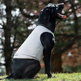 Cool Aid Cooling Dog Vest on SALE