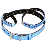 Concha Collars - Step 1 - Design Your Theme