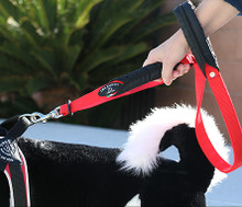 Tre Ponti Double Handle Leash