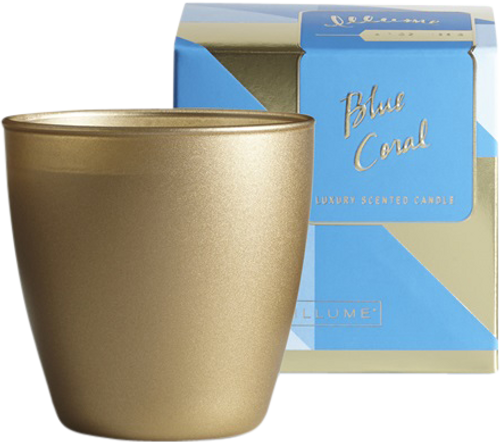 ILLUME Demi Boxed Glass Blue Coral Candle - 139g