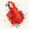 Parrot on Parade  Cross Stitch Kit By Bothy Threads