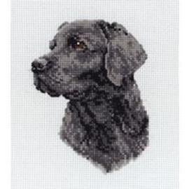 Black Labrador Cross Stitch Kit by Anchor