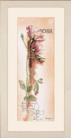 Rosa Botanical Cross Stitch Kit by Lanarte