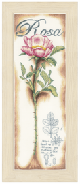 Counted Cross Stitch Kit: Pink Rose (Linen)