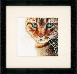 Cat in Close-Up (Aida,W) Counted Cross Stitch Kit By Lanarte