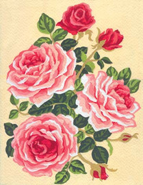 Pink Roses  Canvas only By Grafitec