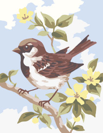 Sparrow Canvas only By Grafitec