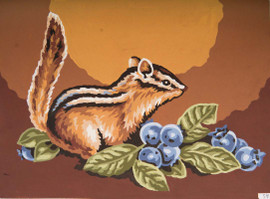 Squirrel Canvas only By Grafitec