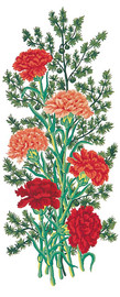 Carnations Canvas only By Grafitec