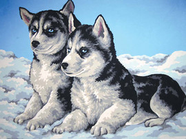 Husky Puppies Canvas only By Grafitec