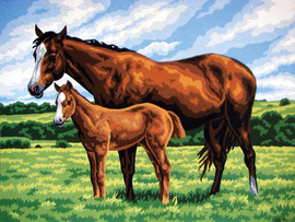 Mare and Foal Canvas only By Grafitec