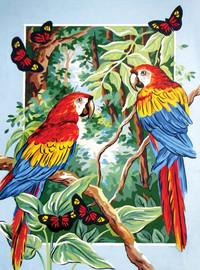 Tropical Parrots Canvas only By Grafitec