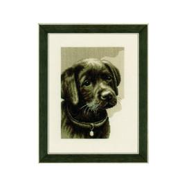 Labrador Puppy  Cross Stitch Kit By Vervaco