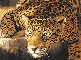 Jaguar Prowl Tapestry Canvas By Grafitec