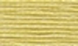 17 - DMC Stranded Thread Art 117