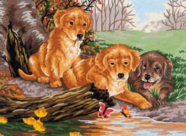 puppy fun  Canvas By Grafitec