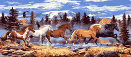 Running Horses Canvas By Grafitec