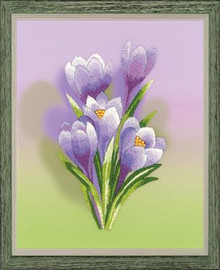 Crocus Embroidery Kit By Riolis