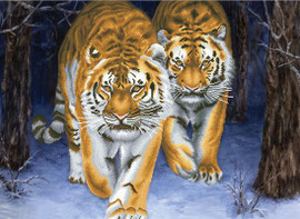 Stalking Tigers No Count Cross Stitch Kit By Riolis